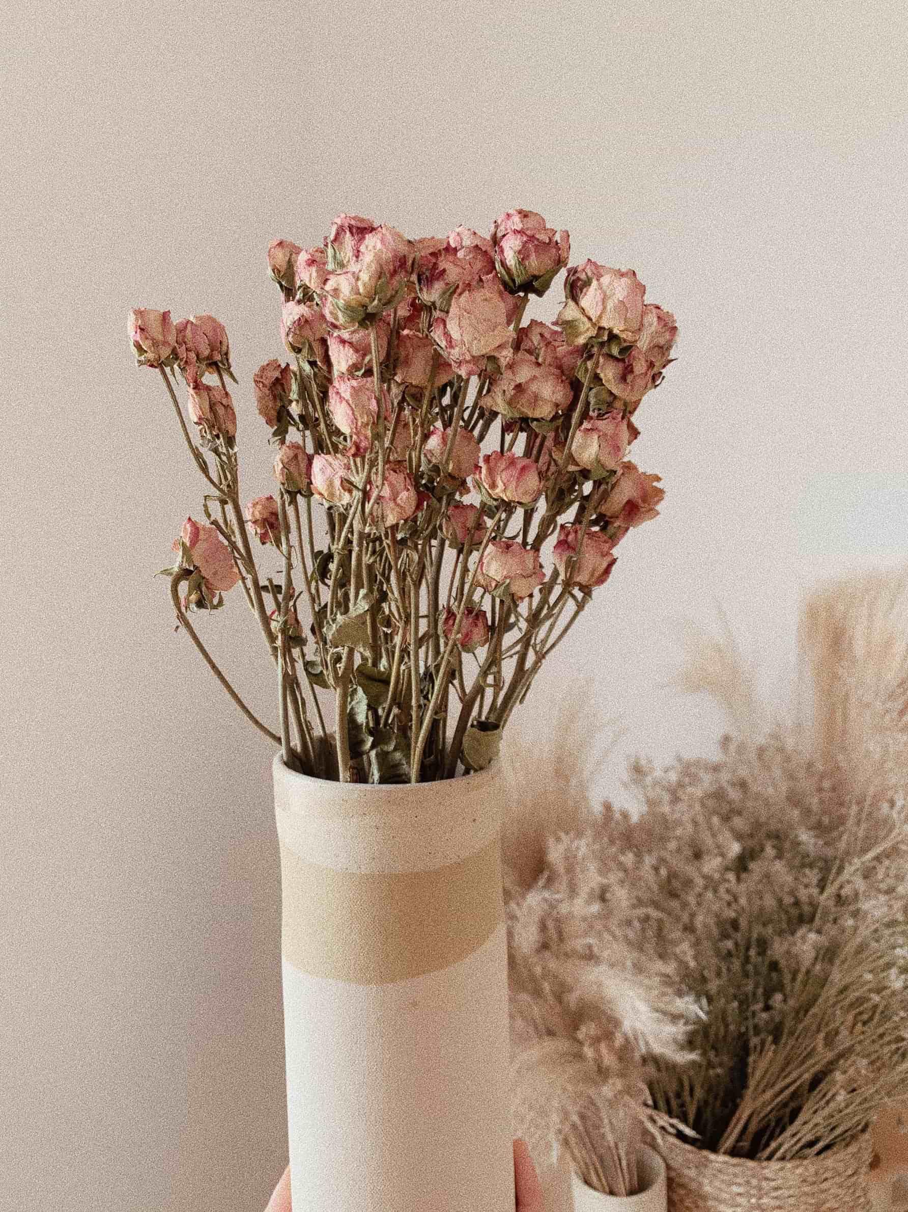 ורדים מתוקן